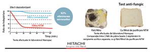 Eliminarea mucegaiului si ciupercilor